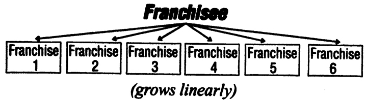 The Linear Business Growth of Franchising Diagram.Image size:720x197px