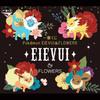 Pokemon EIEVUI & FLOWERS Kuji