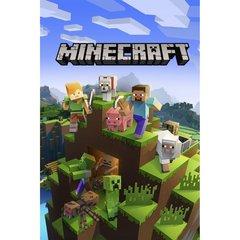 Minecraft_starter_collection_1575285319