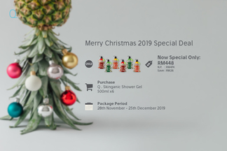 X'mas 2019 package qsg2