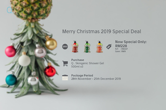 X'mas 2019 package qsg1