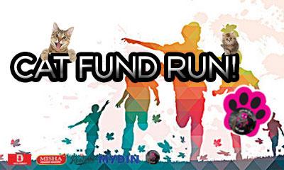 Cat Fund Run