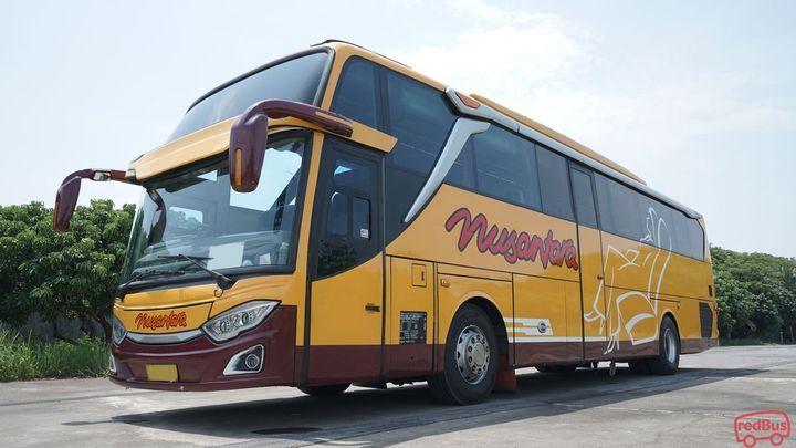 Karawang To Semarang Nusantara Bus