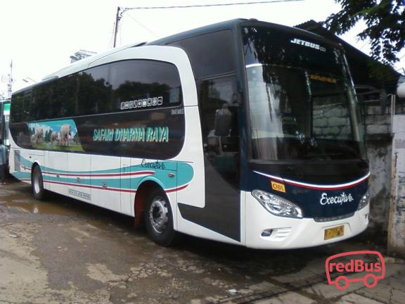 Safari Dharma Raya Buses