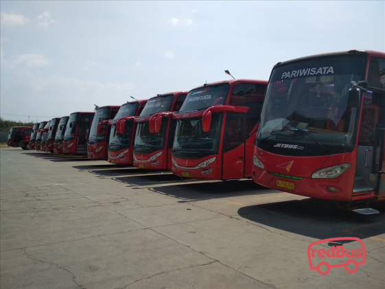 Agra Mas Bus Fleet