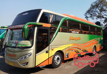 PO Menggala Buses