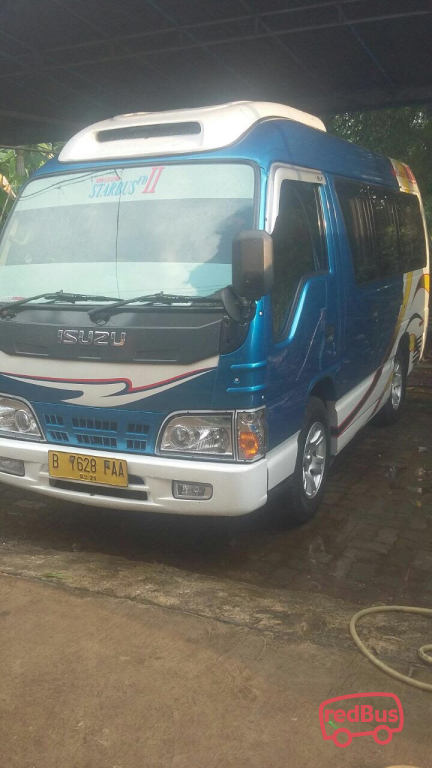 ABM Travel Buses