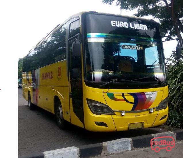 Jadwal Dan Tarif Bus Dari Jakarta Ke Surabaya