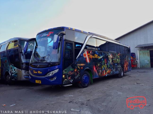 Tiara Mas Transport Pariwisata Buses