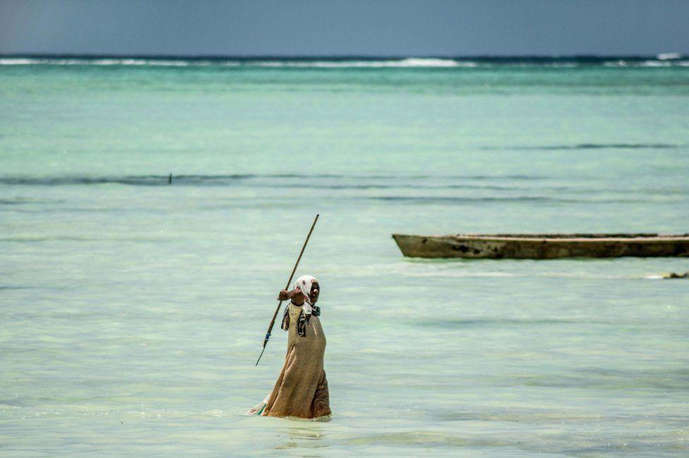 Octopus, Zanzibar, Sea, Hunting, Tribe, Indian Ocean