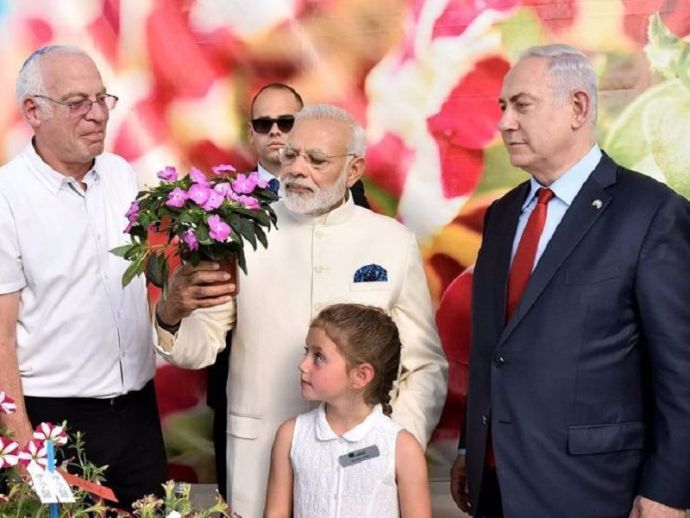 prime minister, narendra modi, india, israel, benjamin netanyahu, chrysanthemum, flower, named, after, jewish, danziger, farm, horticulture, innovation, fast, growing