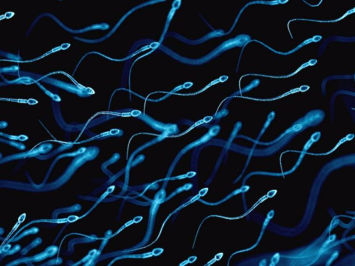 Sperm, Sperm Count, Fertility Clinic, Fertility, Sperm Test, App