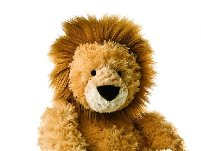 couple, battle, custody, stuffed toy, lion, jesus, british columbia, court, case, Provincial Court of British Columbia, supreme court, Justice Diane MacDonald, west kelowna, church, arrest, court documents, papers, medical care, adoption, home birth, vacc