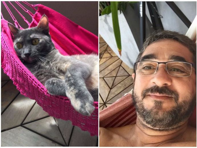 hammock, cat, pets, love for pets, Ana Beatriz Pinho, Paçoca
