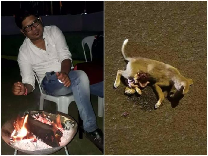 Nagpur, Puppy Brutally killed, Cruelty against animals, Accused bailed