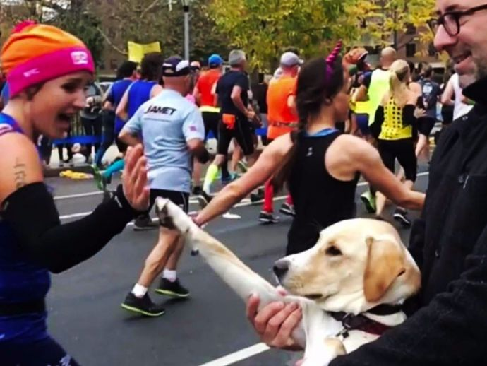 NYC Marathon, Cheering Dog, Marty McFly, Onlookers, Jenny McCoy, Guilherme de Oliveira.