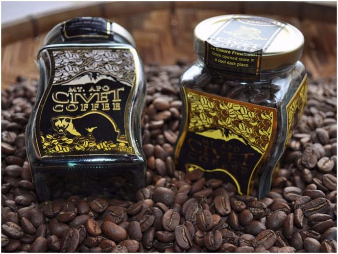 Civet coffee, Coorg Consolidated Commodities, Exotic coffee blend, Coorg