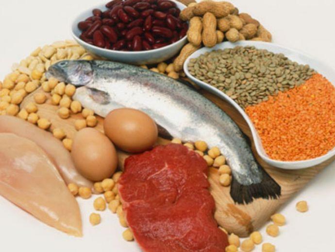 protein, food, protein food, health talk