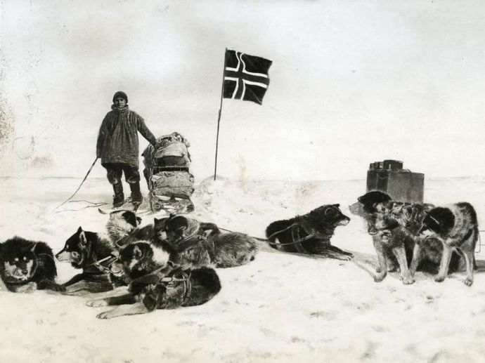 Roald Amundsen, South Pole, travel, british, Norway, Robert Scott