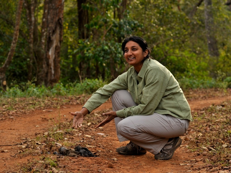 Uma Ramakrishnan, tigers, Ramakrishnan, National Centre for Biological Sciences (NCBS)
