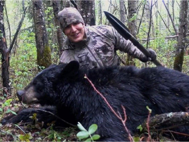 Canada, Outrage In Canada, Environmentalist, Bear, Bear Hunting, Kyle Ferguson, Alberta, Ministry of Environment, Bowman, Josh Bowman