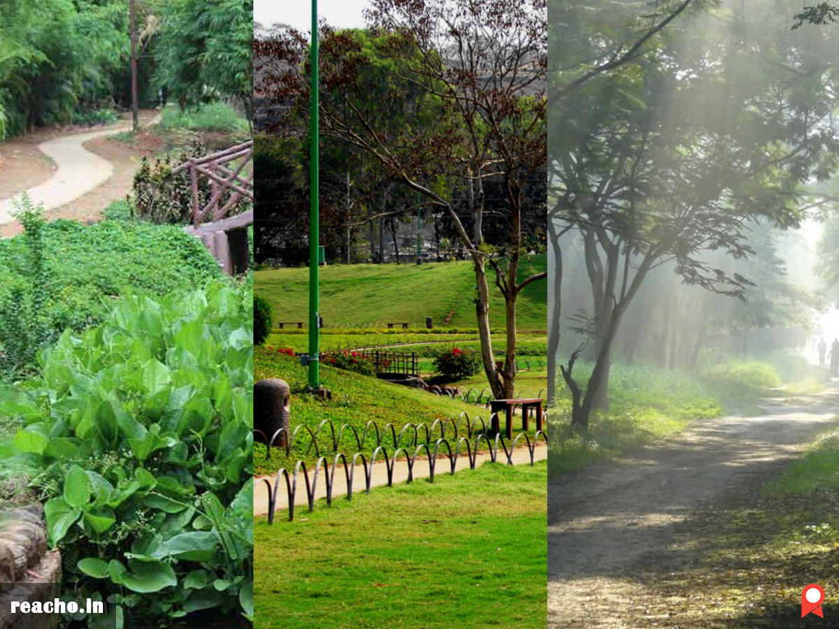 Pune, Morning Walk, Evening Walk, Reacho Pune, Saras Baug, Taljai, Pu La Deshpande Garden, Muredha Nala Park, Chittaranjan Vatika Garden, Tekdi, Thorat Udyan, Khadakwasla, Places To Enjoy Morning walks In Pune, Places To Enjoy Evening Walks In Pune, Best, Best Parks In Pune, Best Gardens In Pune, Gardens In Pune