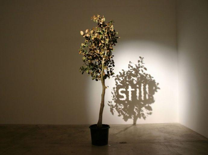auminium works. shodaw art, Artist, Fred Eerdeken, shadow sculpture, hidden messages