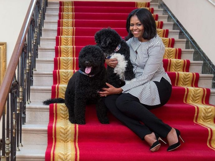 Michelle Obama, White House, Barack Obama, donald trump, inauguration, president, first lady