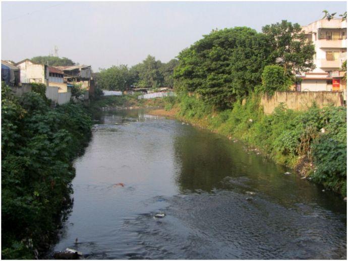 nagpur, nmc, nagpur rivers, nag river, pili river, pora river, Save Nag River- My city, My River, monsoons, river cleanliness drive, april, waterlogging