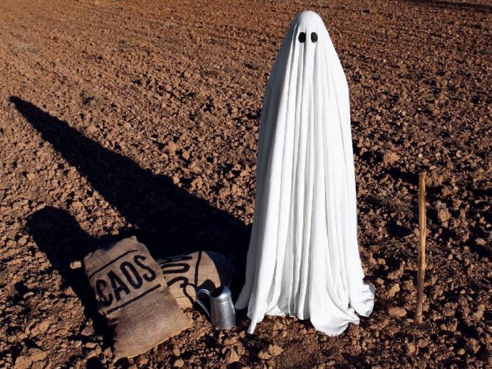 Instagram, Ghost, Social Media, Mr. Boo, Spain, Entertainment, Streets