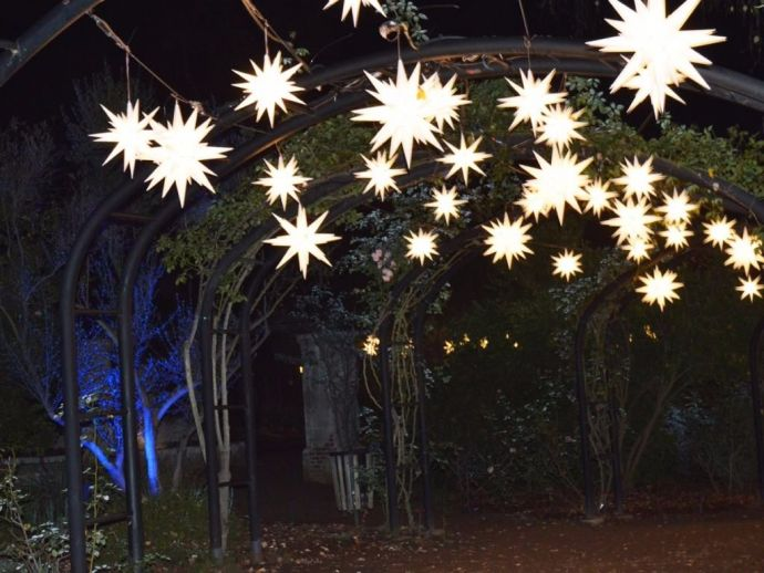 Descanso Gardens, Enchanted: Forest of Light, Los Angeles