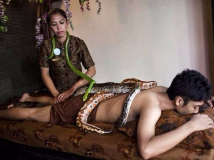 Jakarta, Indonesia, Python, Massage, chilling treatment, adrenaline, scary, fear, Bali Heritage Reflexology and Spa