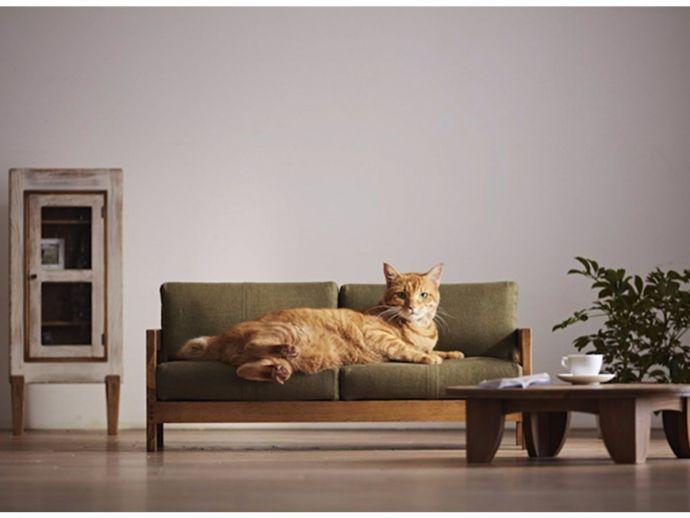 Small furniture, okawa city, craftsman MADE', Japan, Cute furniture, Adorable small bed