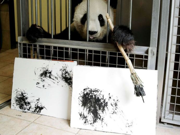 Schoenbrunn Zoo, Artistic Panda, Paintings made by Panda, Vienna Zoo, Yang Yang, US$560 painting, €490 painting