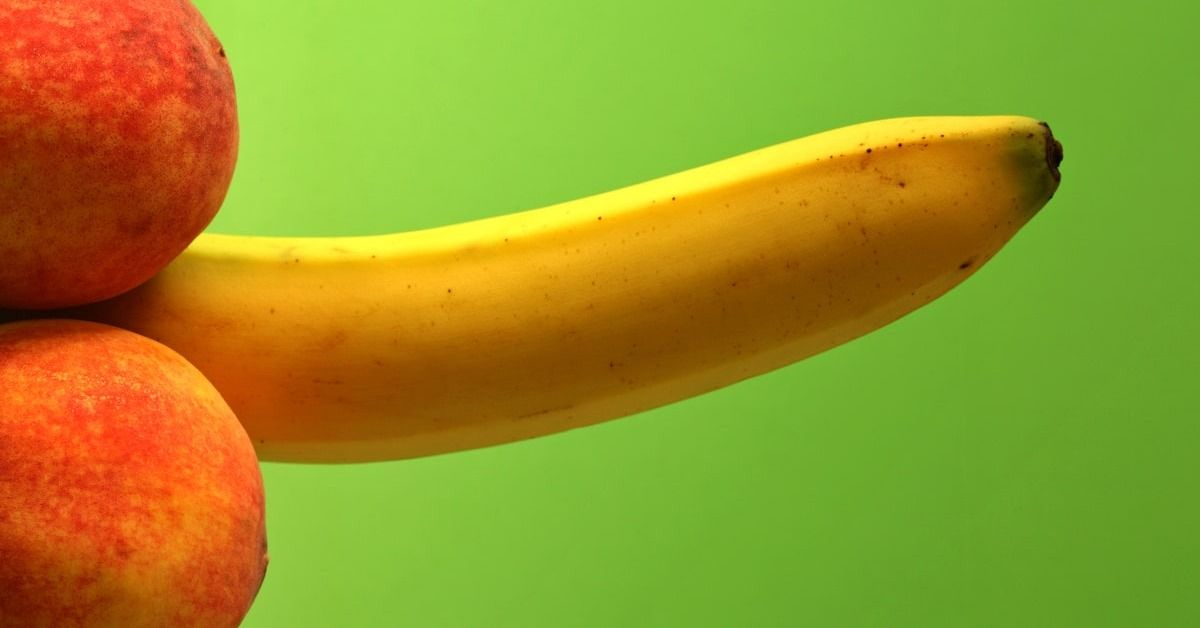 Ever Wondered Why Human Penis Is Boneless? These Scientists Might Finally Have An Answer