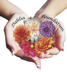 Dahlia Foundation Rehabilitation Centre
