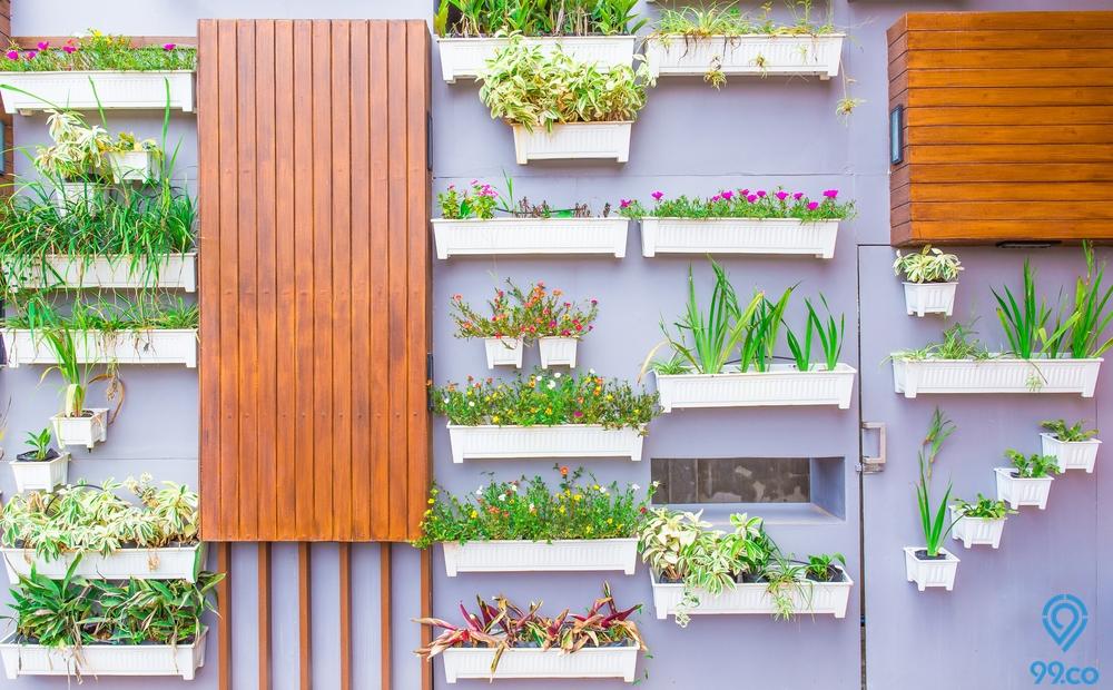 9 Cara Membuat Taman Vertikal yang Dapat Mempercantik Rumah