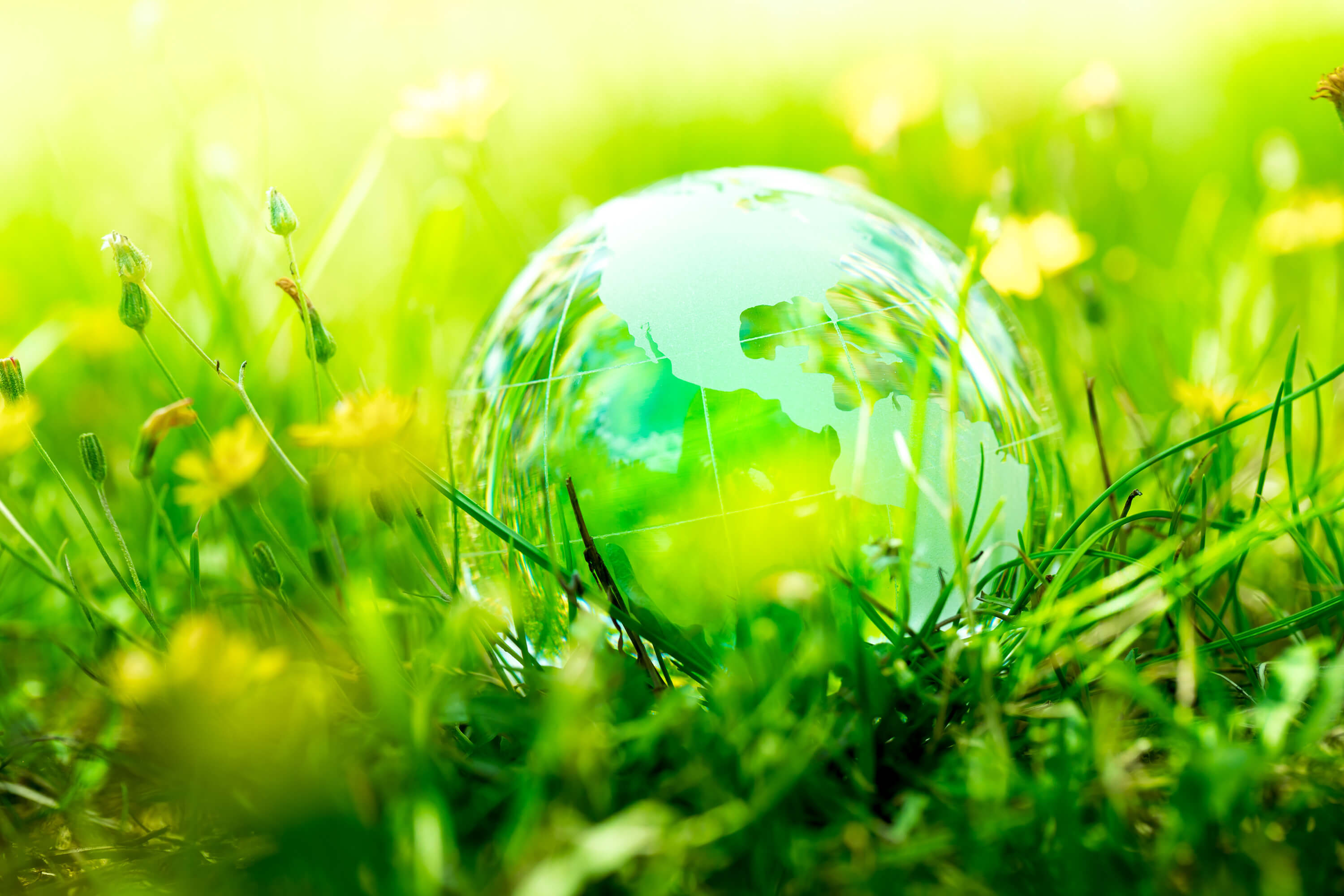 Green Alert: The future of Real Estate towards a cleaner, greener environment