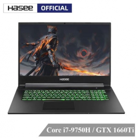 Hasee G7-CT7NK Laptop for Gaming(Intel 9Gen i7-9750H+GTX1660Ti 6G GDDR6/16G RAM/256G SSD+1T HDD/17.3'' 144HZ 72%NTSC IPS/DOS)