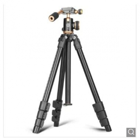 QZSD Q160S Portable Aluminum Alloy Camera Tripod - Black and Golden