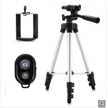 With Remote Control 3110 Tripod Stand 4-SECTION Lightweight Portable Mini Trip - Silver