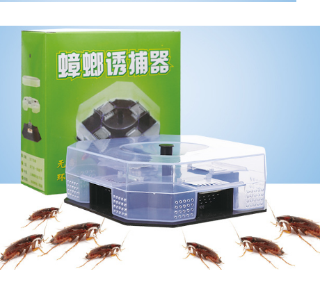 Best price plastic cockroach killer
