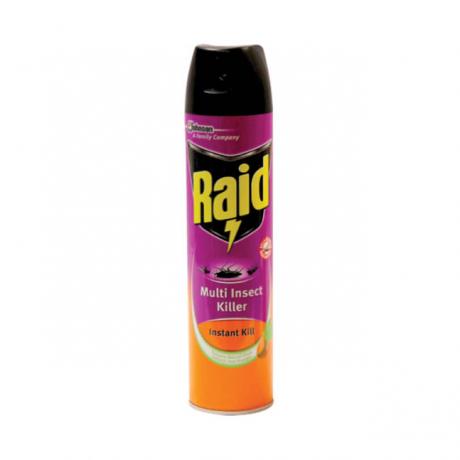ថ្នាំបាញ់សំលាប់សត្វល្អិត Raid