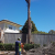 talltimberstreeservices@alephit.net.au