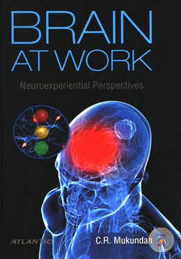 Brain at Work Neuroexperiential Perspectives