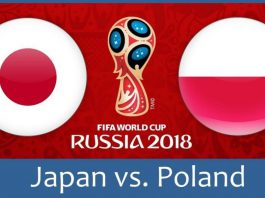 Japan Archives | Rooter - Latest Sports News, Live Fantasy