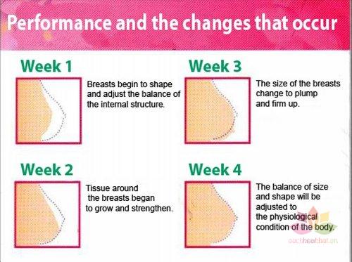 Kem săn chắc ngực Yanhee Beauty Breast Cream