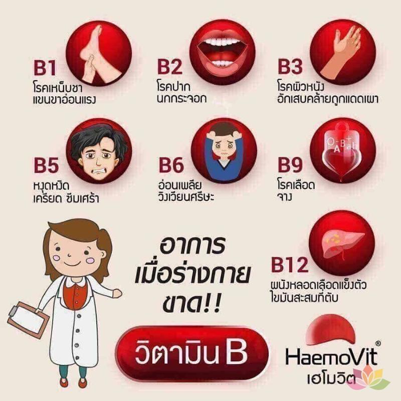Tăng Cân Haemo Vit Thái Lan ảnh 4