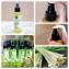 Tinh dầu xịt chống muỗi côn trùng Citronella Phutawan ảnh 8