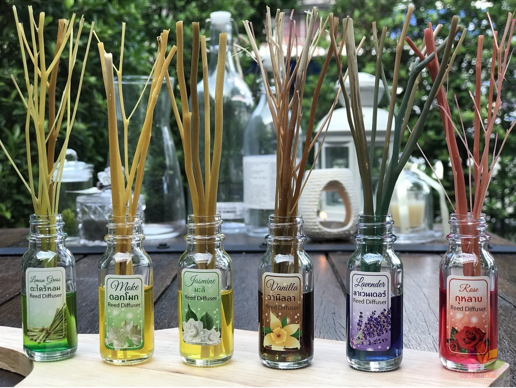 Thân cây phát tán tinh dầu Hong Hom